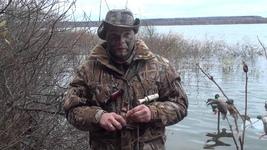 Охота с манком: выбираем манок для охоты на птицу