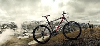 Горный велосипед – в чем отличие и как выбрать