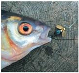 Мастерская рыбака: самодельные приманки